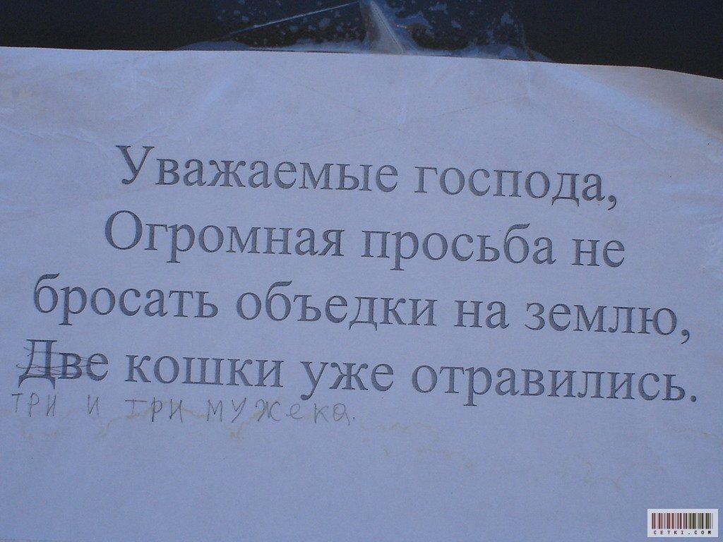 http://prikol.pikmik.ru/i/prikol.pikmik.ru/imgs/354fc9feba83a7eb7bcd5c4ceef89a89.jpg