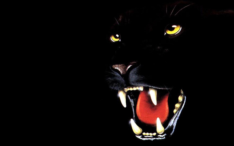 1288760958 1440x900 threatening panther 37 33 kb rating 110